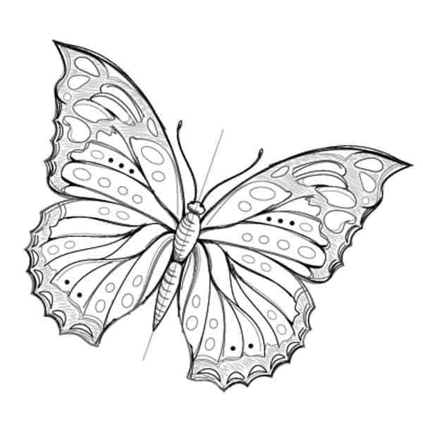 add eyes and antenna for butterfly